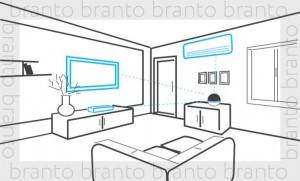 branto_10