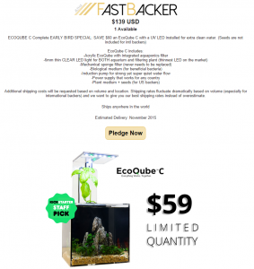 Fast backer_4