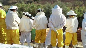 Bee Garden Lanza su Primera Campaña de Crowdfunding