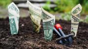 ¿Cuáles son los mejores momentos para revisar una inversión?