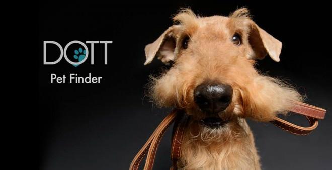Con Dott Crea una Comunidad Entorno a Tu Mascota que Te Ayudará a Recuperarla si se Pierde