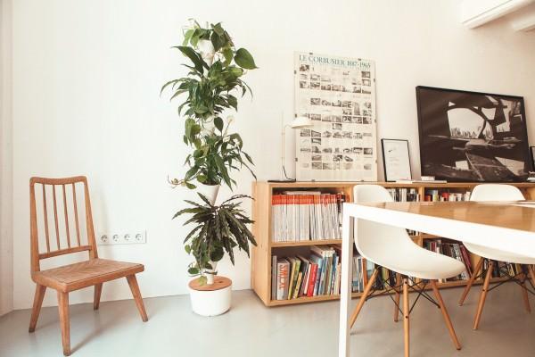 Citysens Nuevo Jardín Vertical de Interior, Personalizable y con Riego Automático Éxito en Verkami