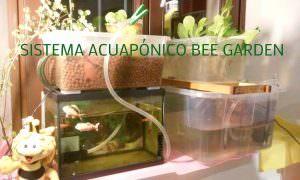 bee garden_1