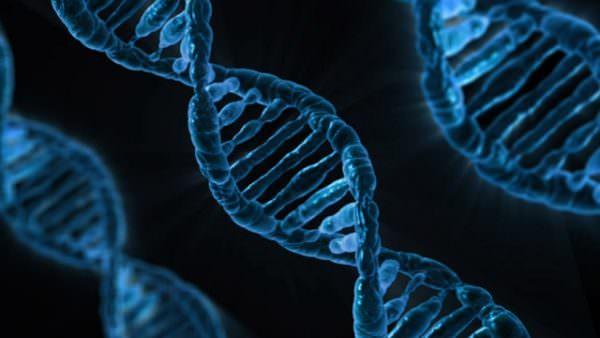 Las mejores oportunidades de inversión en Biotecnología de Capital Cell