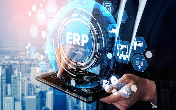 Realizar una buena gestión de tu negocio con un software ERP